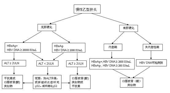 慢性乙型肝炎治疗一般流程图