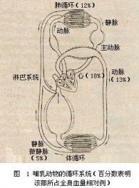 Bk8dg.jpg